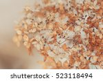 abstract background from autumn ... | Shutterstock . vector #523118494
