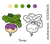 coloring book for children ... | Shutterstock .eps vector #523203610