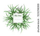 Frame With Aloe Vera Plant ...