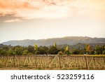 sonoma county vineyard at... | Shutterstock . vector #523259116