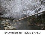 idaho natural hot spring | Shutterstock . vector #523317760