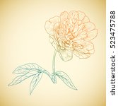 colored peony in vintage... | Shutterstock . vector #523475788