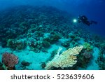 diver on the reaf of red sea | Shutterstock . vector #523639606