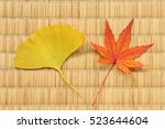maple and ginkgo leaves on... | Shutterstock . vector #523644604