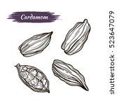 vector line drawing handmade...   Shutterstock .eps vector #523647079