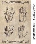 hand palm set. vector vintage... | Shutterstock .eps vector #523698940