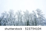 Winter Trees On Snow With Snow...