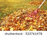 fan rake and pile of fallen... | Shutterstock . vector #523761478
