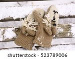 Cute Knitted Mittens With Lion...
