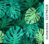 seamless pattern of leaves... | Shutterstock .eps vector #523798228