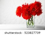 Beautiful red dahlia flowers in ...