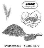 Bread Set. Handwritten Sketch....