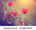 poppy in sunset | Shutterstock . vector #523845499