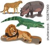 set of african predators