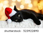 Stock photo black cat in santa hat sitting over holiday lights pet s christmas concept kitten on xmas studio 523922890