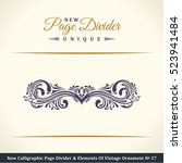 new calligraphic page divider... | Shutterstock .eps vector #523941484