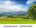 art rural landscape. field and... | Shutterstock . vector #524014663