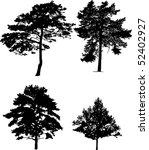 Illustration With Four Pine...