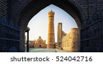 yard of poi kalyan oriental... | Shutterstock . vector #524042716