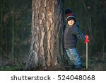 young boy playing outdoor with... | Shutterstock . vector #524048068