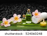 still life with frangipani and... | Shutterstock . vector #524060248