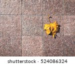 Gold Yellow Leaf On The...