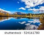 the concept of recreational... | Shutterstock . vector #524161780