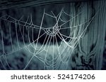 Cobweb With Ice On Wooden Trunk ...