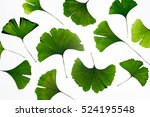Pattern Made With Green Ginkgo...