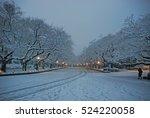 Tokyo  Japan Ueno Park  Snowin...