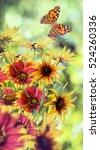 beautiful flowers on a green... | Shutterstock . vector #524260336