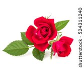 Stock photo red rose flower bouquet isolated on white background cutout 524311240