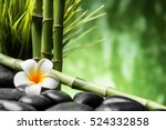 spa concept with zen basalt... | Shutterstock . vector #524332858
