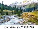 Mountain River Landscape