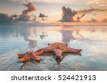 Two starfish on sea beach at...