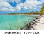 flamingo beach at aruba island | Shutterstock . vector #524448526