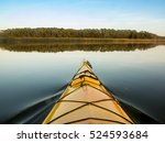 point of view shot from inside... | Shutterstock . vector #524593684