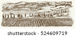 wide view of vineyard. vineyard ... | Shutterstock .eps vector #524609719