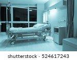 blurred background of empty bed ... | Shutterstock . vector #524617243