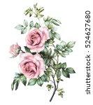watercolor flower. floral...   Shutterstock . vector #524627680