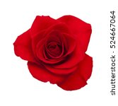 Dark Red Rose Isolated On Whit...