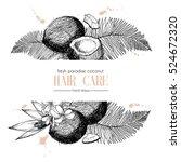 set of hair care ingredients.... | Shutterstock . vector #524672320