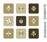 vector flat icons set   plant... | Shutterstock .eps vector #524684770