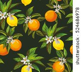 seamless citrus pattern.hand... | Shutterstock .eps vector #524686978