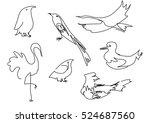 linear sketch birds silhouette | Shutterstock .eps vector #524687560