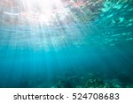 underwater blue background with ... | Shutterstock . vector #524708683