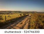 South Downs Way Footpath On A...