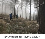 Misty Hike At La Viga  Arteaga...