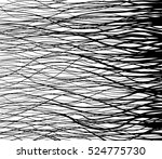 vector hair. the contour of the ... | Shutterstock .eps vector #524775730