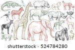 Stock vector african animals set elephant giraffe buffalo hippo rhino lion cheetah antelope ostrich 524784280